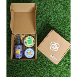 Radiance_Box-Beauty Boxes and Hampers-Wild Flower Naturals-2789