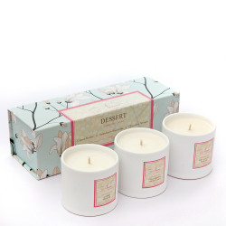 Dessert_Collection_-_Set_of_3_candles-gifts for her-Niana-970