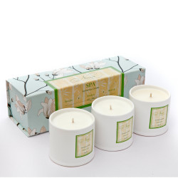 Spa__Collection_-_Set_of_3_candles-gifts for her-Niana-973