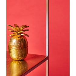 Pineapple_Box-Decor-Topp Brass-2201