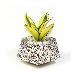 Concrete_Terrazzo_Floater_Planter_-Planters-Elite Earth-2400